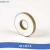 50x20x6 100x100 - Tấm gốm áp điện lớn 60 x 30 x 10 mm